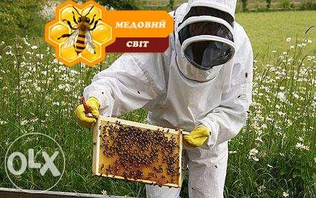 """""""Медовий світ"""" магазин меду та продктів бджолярства"""